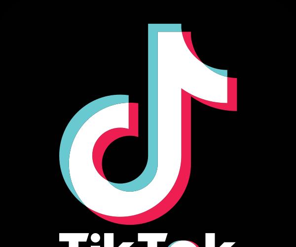 A Guide for Every TikTok User