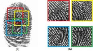 Fingerprint Sensor_1