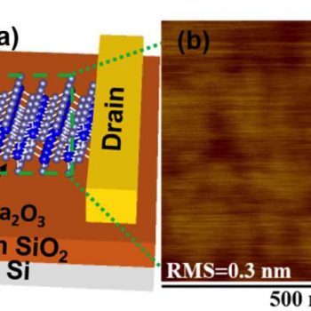 Semiconductor Eyed for Next Generation 'Power Electronics'