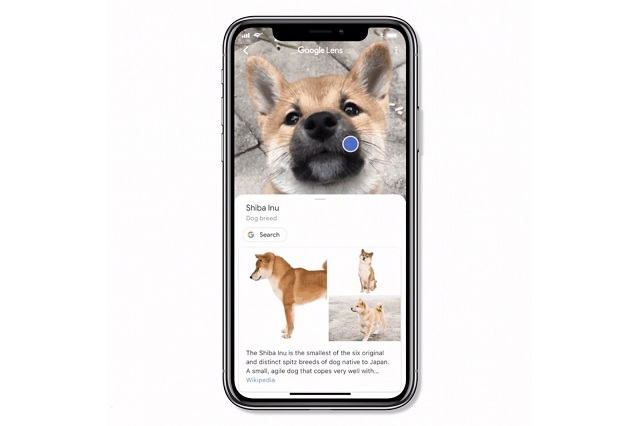 How to Use Google Lens on iPhone and iPad